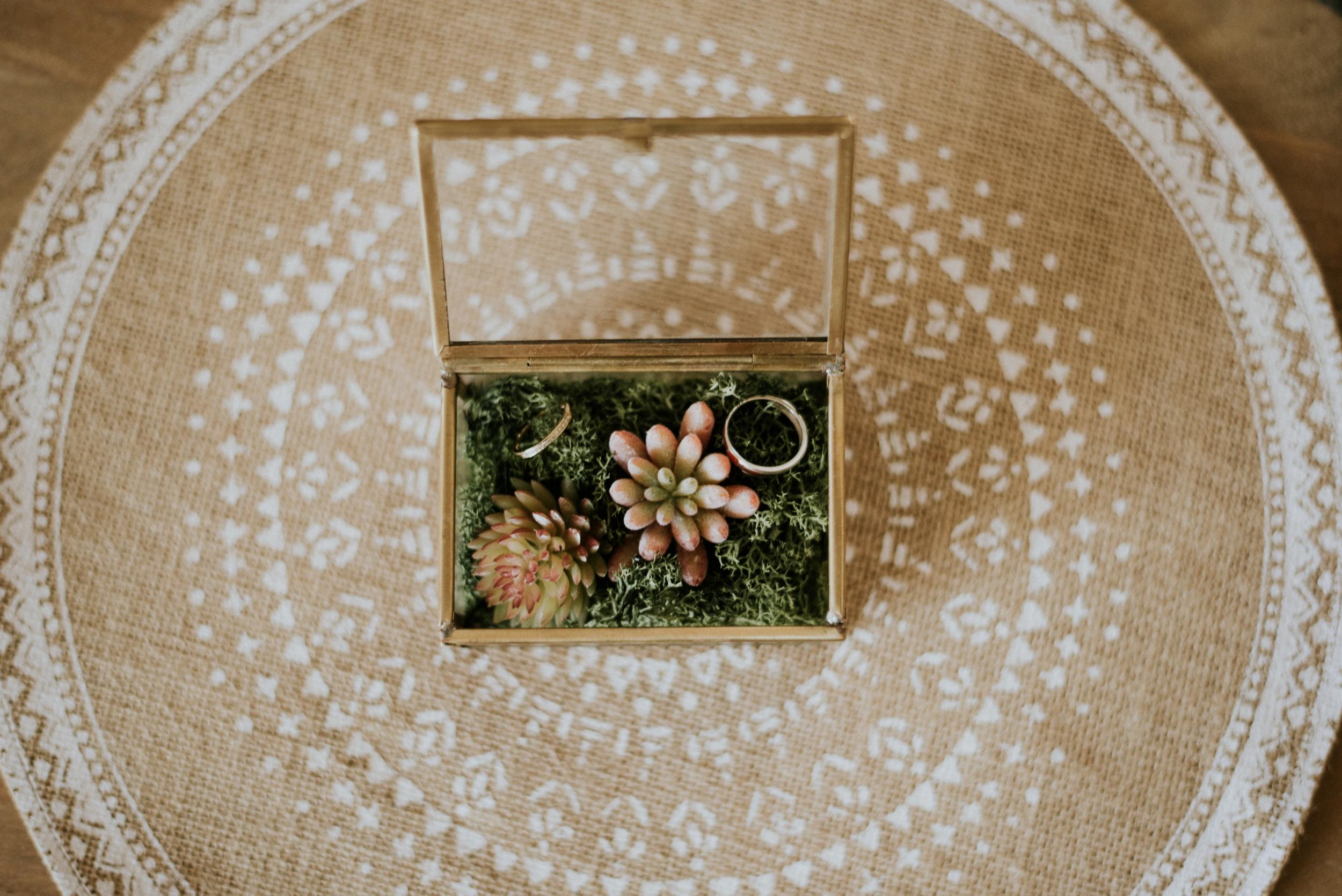 photographe mariage rhone alpes grenoble lyon annecy geneve montagne ceremonie laique_0016
